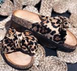Sandal leo
