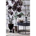 Flora Lotus dia 8x70 cm Soil Brown
