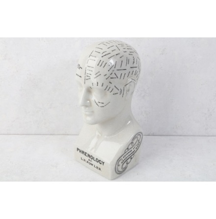Huvud H 26x 11,5 cm Phrenology Keramik glaserad
