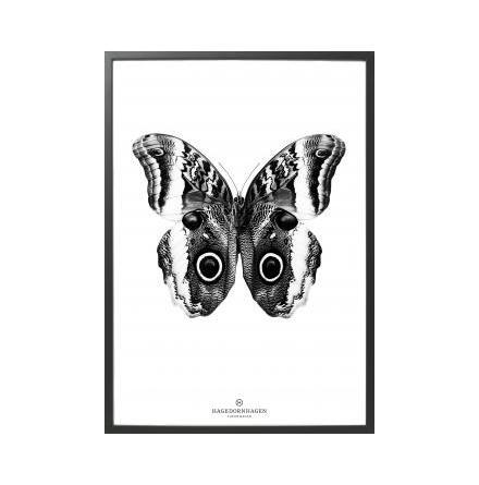 Poster, BW3 70x100 cm