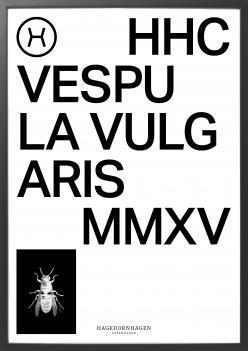 Poster, HHC2 70x100 cm