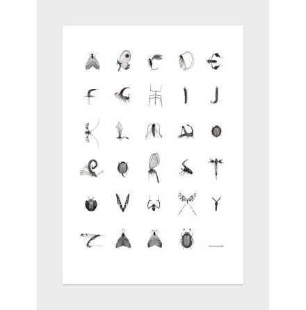 Print, Insektsalfabet 70x100 cm