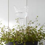 Självbevattnare i Glas, Fågel
