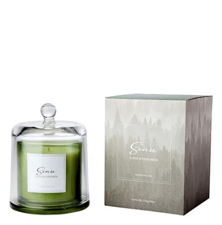 Doftljus med Glaskupa, Vintergröna
