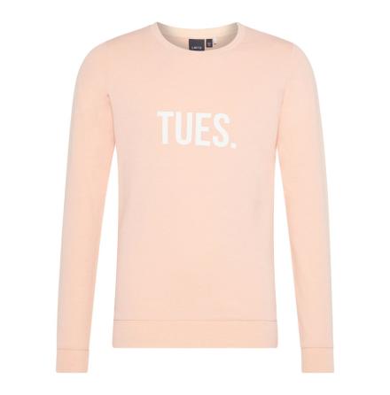 Sweatshirt, Rosa