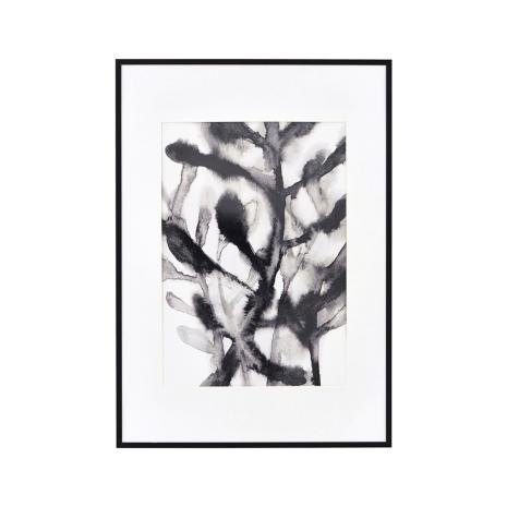 Illustraton med Ram, Örtväxt 42x59,4 cm, House Doctor