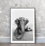 Art Print, Sweetest Adele 30x40 cm, Love Warriors