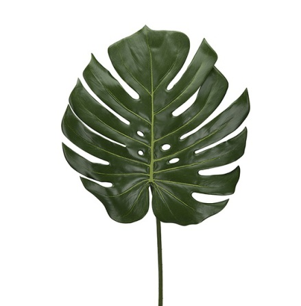 Monstera blad höjd 60 cm dia 35 cm