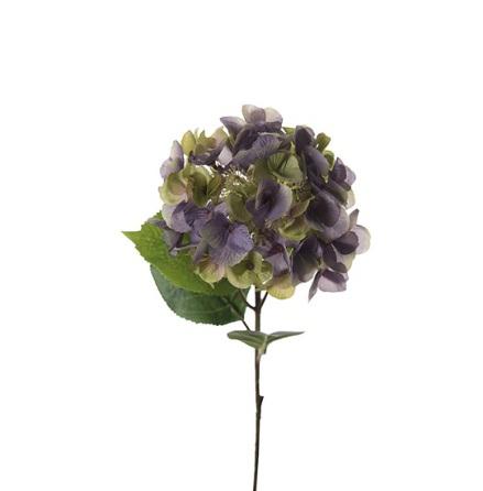 Hortensia höjd 45 cm