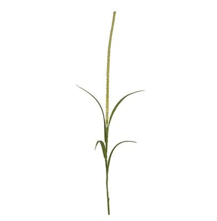 Gräs höjd 100 cm