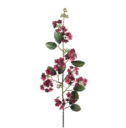 Virburnum höjd 85 cm